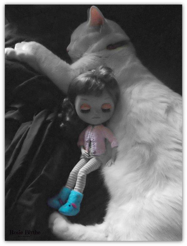 La sieste se termine avec Montagne et Yvi, plus dur pour Rosie de se réveiller !