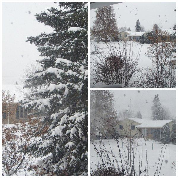 Mauvais temps aujourd'hui tempête hivernale !