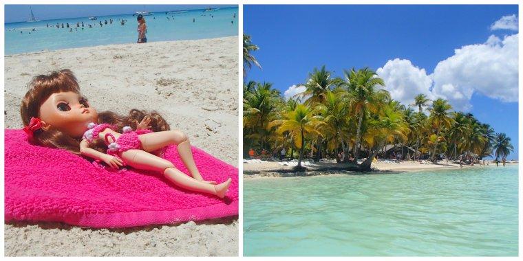 De retour de Punta Cana République Dominicaine