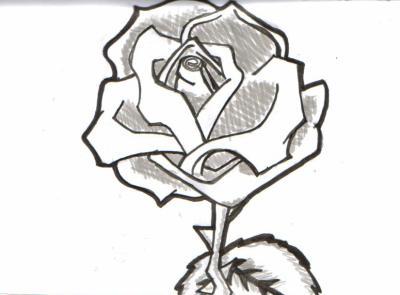 Rose Noir Blanc Du Dessin De La 3d Enfin Tout Sauf Des Photos