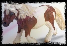 Les poneys !!