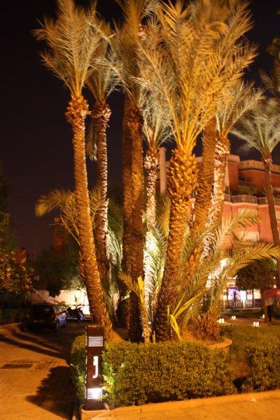 Ouverture du Bert's marrakech