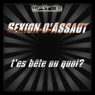 Sexion D'Assaut ♥