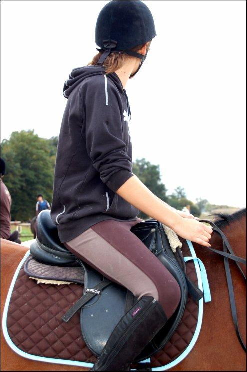 Tapis Fouganza Choco Lisere Ciel Vente De Materiel D Equitation