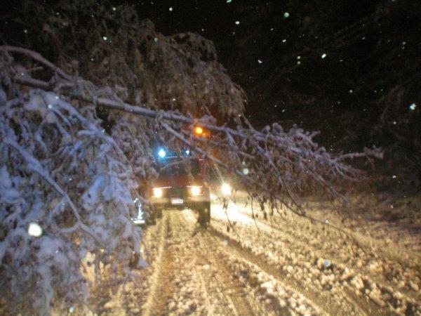 Neige de fin Décembre 2010
