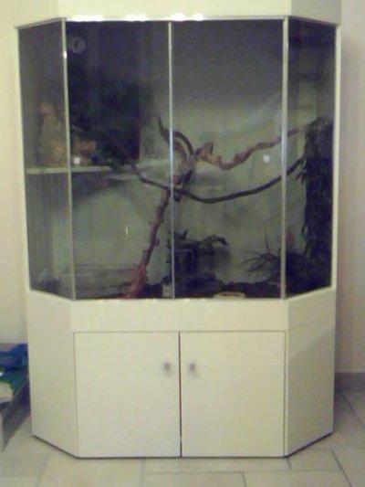 vivarium fait maison ventana blog. Black Bedroom Furniture Sets. Home Design Ideas