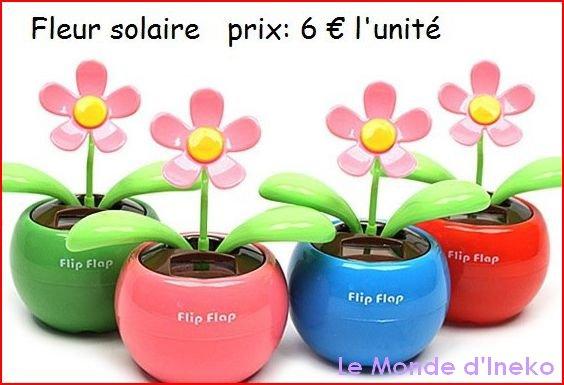 Fleurs solaires, une idée cadeau original et écologique! ♥