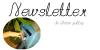 Inscription à la Newsletter !