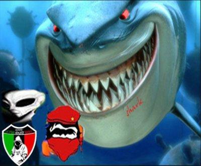 hada howa shark 7diw mano rah DANGER
