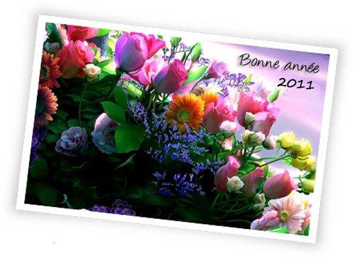 JE VOUS OFFRE TOUS MES MEILLEURS VOEUX DE BONHEUR ET SANTE POUR 2011