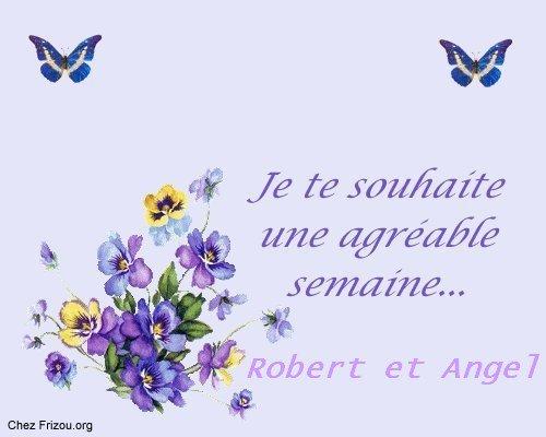 CI-DESSOUS UN NOUVEAU CADEAU DE MES AMIS ANGEL ET ROBERT