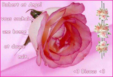 Cadeau de mes amis Robert et Angel