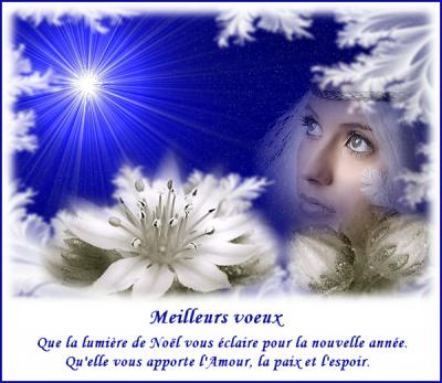TOUS MES MEILLEURS VOEUX DE BONHEUR POUR 2012