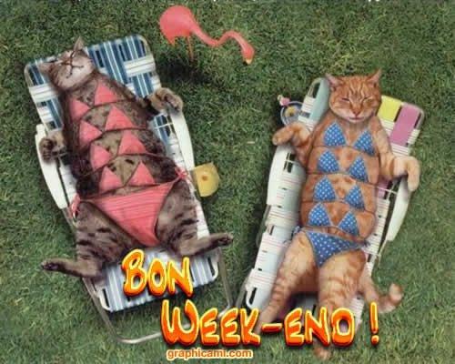 BON WEEK END A TOUTES ET TOUS