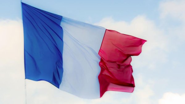 En hommage à toutes les victimes décédées ou blessées lors des attentats de Paris du 13 Novembre 2015.