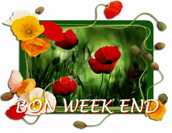 BON WEEK-END ENSOLEILLE DE PREFERENCE