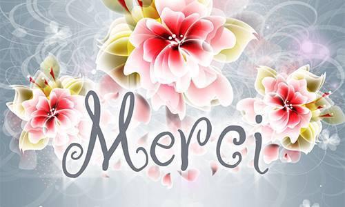 Je viens vous dire un grand MERCI pour toutes vos marques d'affection reçues en ce 21.04.17.