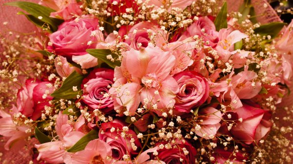 Cadeau pour l'anniversaire de mon amie Evelyne que j'embrasse affectueusement