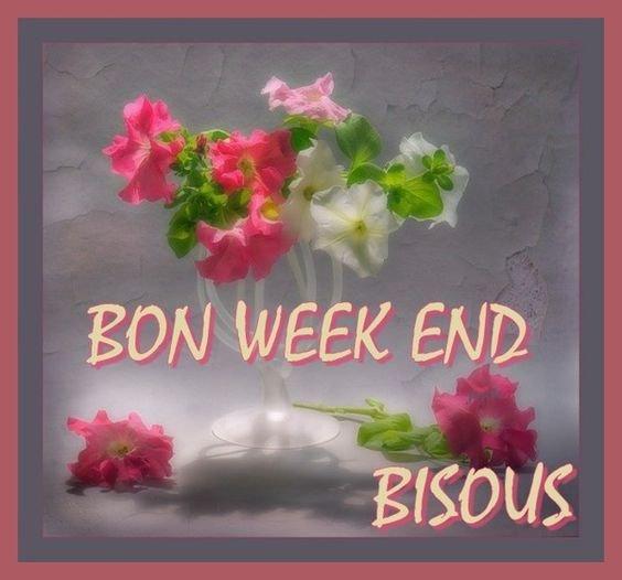 BONSOIR LES AMIES - BON WEEK END A TOUTES AVEC MES AMITIES