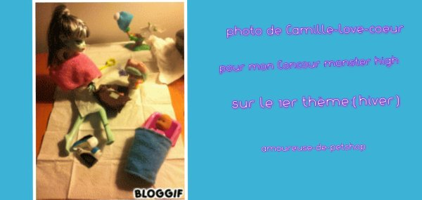 photos des participantes pour mon Concour sur le 1er theme:hiver +gagnante+Rappel