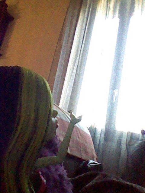 mes monster high toralei scarah kiara et gooliope de sorti dans la maison de ma tante