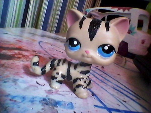 custom de  tiger avant (custom en tigre)