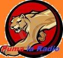 Photo de Puma-la-Radio