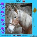Photo de xx-Effy-et-Emma-xx