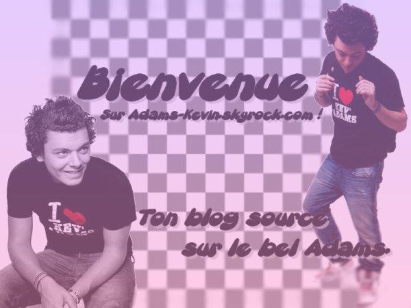 Biographie + Sommaire + Newsletter