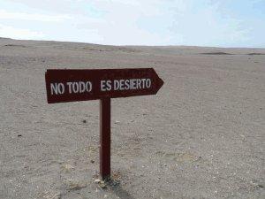 no todo es desierto