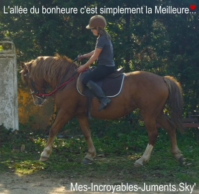Mes-Incroyables-Juments ♥