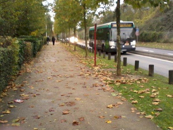 BUS 306 pour Noisy-RER (7315 de l'agora V2)