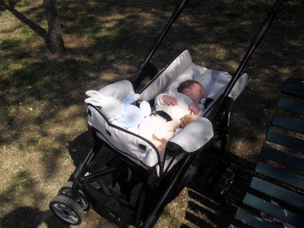 le bébé prix en photo le 21 avril dans un magnifique parc