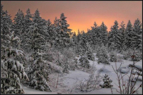 blog en vacance d'hiver