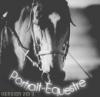 Portrait-Equestre