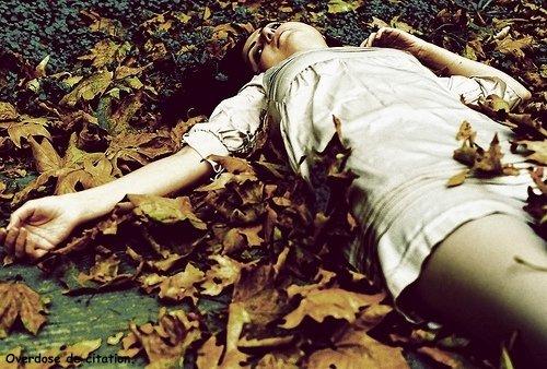 Je lis ta lettre au bords du gouffre, Au bords des drames, le stylo pleur, Le cahier souffre.