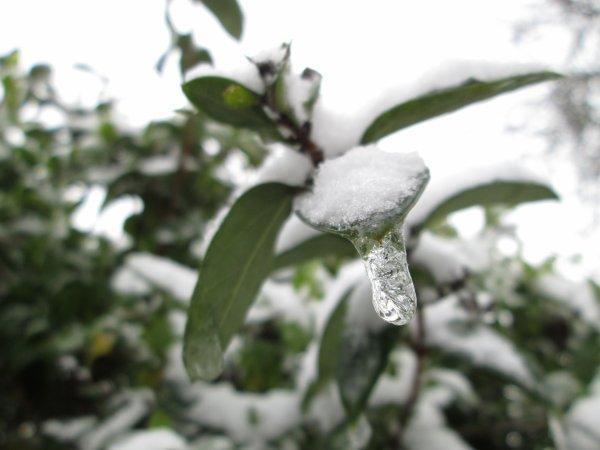 L'hiver revient a l'attaque