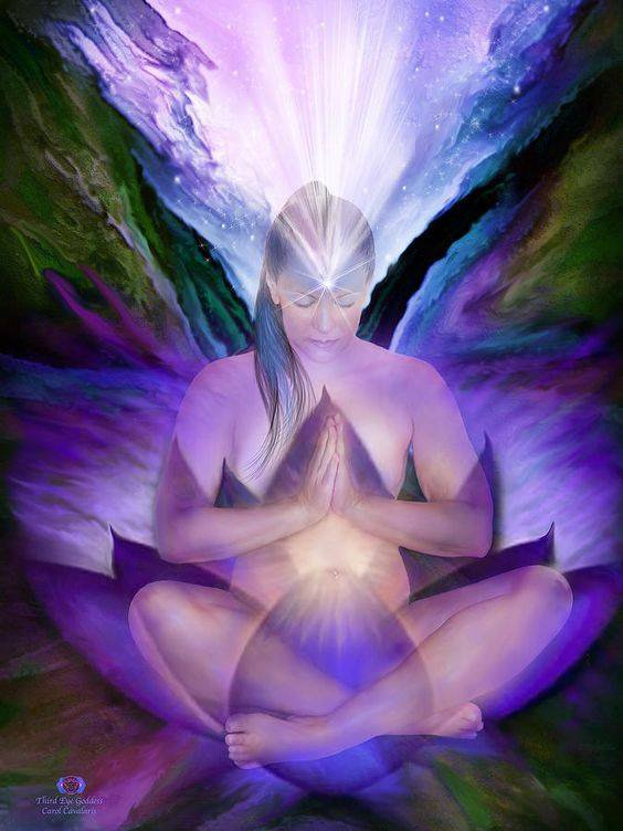 Évolution-Conscience et Équilibre.