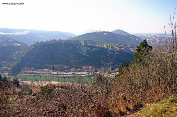 visite et sortie Franche Comté - Doubs   Nature - Sites naturels Forêt de Brégilles