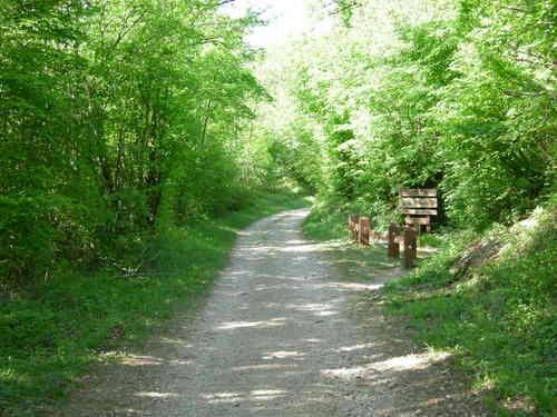 visite et sortie  Franche Comté - Doubs   Nature - Sites naturels Forêt de Chailluz