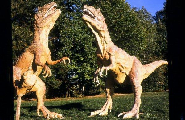visite et sortie Franche Comté - Doubs   Découvertes - A visiter Dino Zoo