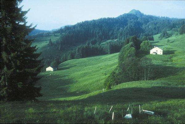 Franche Comté - Jura   Nature - Réserves naturelles Parc naturel régional du Haut-Jura