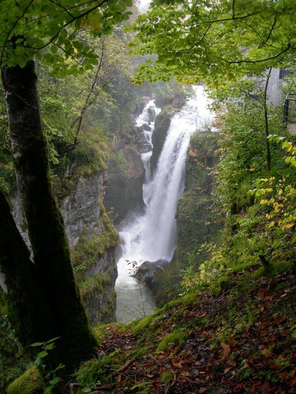 Jura   Nature - Sites naturels Sources de la Saine