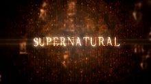 Le logo de la saison 8
