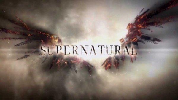 Le logo de la saison 9
