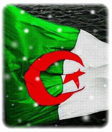 <3 Algerie <3