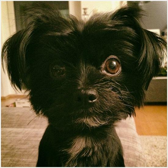 8 472 / Instagram de Georg