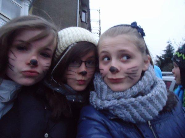 les 3 plus beau chatons