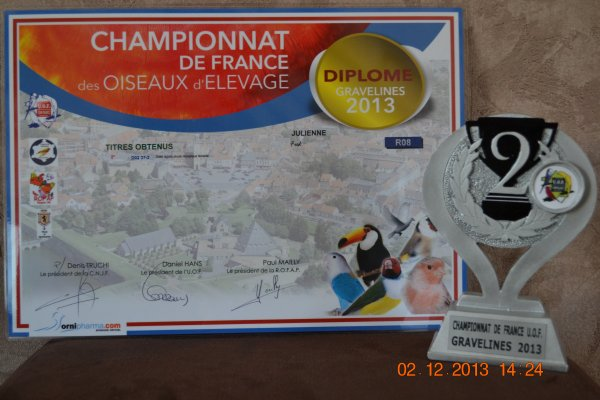 Championnat de France a Gravelines 2013
