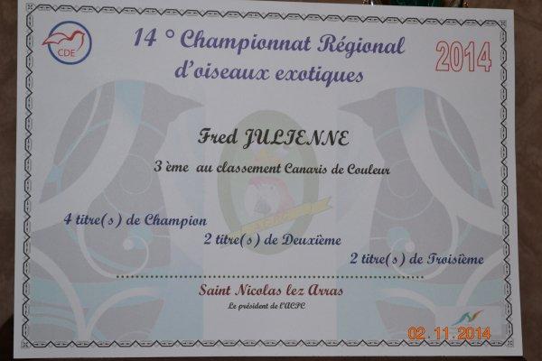 Championnat régional CDE 2014 de saint Nicolas lez Arras